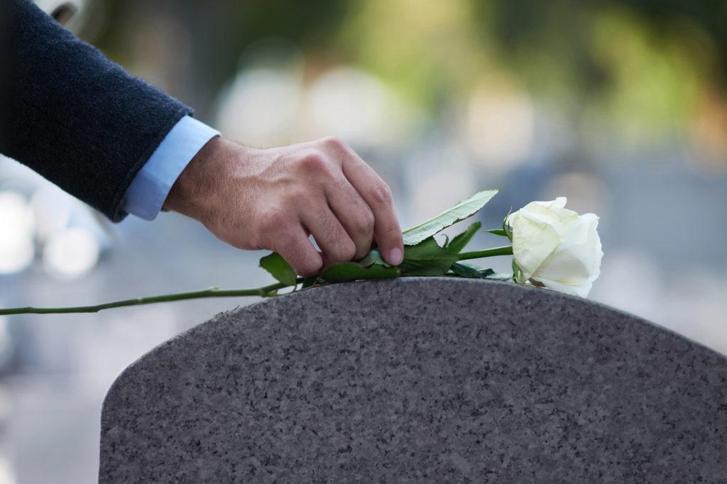 Rose som ligger oppå en gravstein
