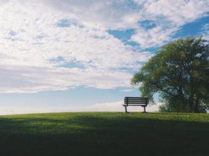 Eng med blå himmel og benk
